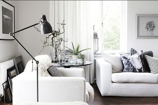 Черный или белый диван? Тонкости выбора
