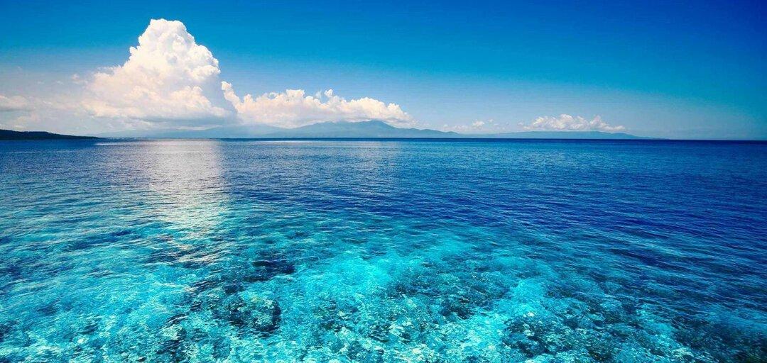 Проблемы загрязнения мирового океана