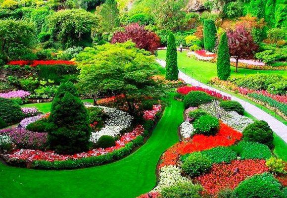 Студия ландшафтного дизайна поможет каждому хозяину частной территории её благоустроить и озеленить